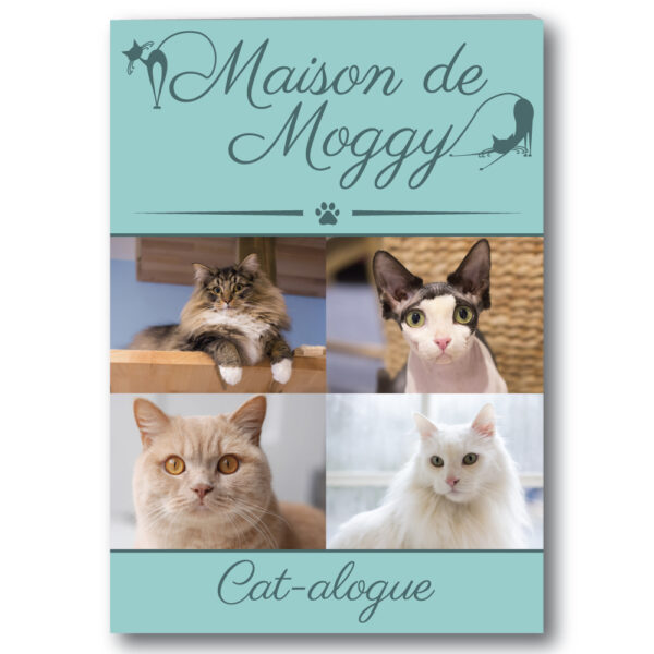 Maison de Moggy Catalogue 2016