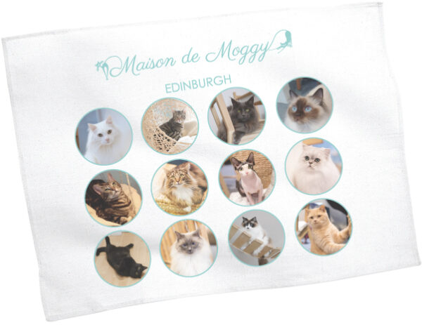 Maison de Moggy Family Tea Towel